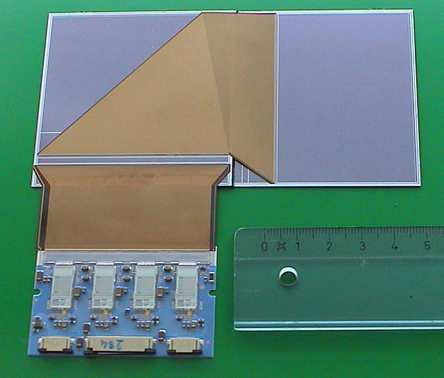 One ladder Silicon module
